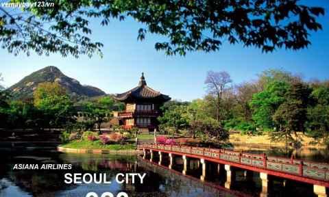 Vé Máy Bay Đi Hàn Quốc Khuyến Mãi Chỉ Từ 320 USD