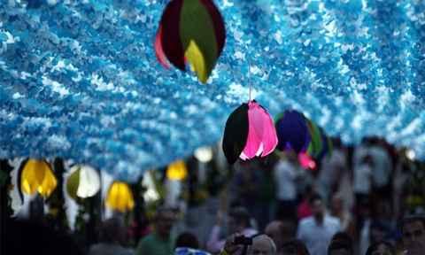 Ngọt ngào thiên đường hoa giấy ở Bồ Đào Nha