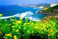 Vé máy bay giá rẻ đi Jeju