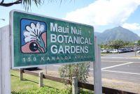 Vé máy bay giá rẻ đi Kahului – Hawaii