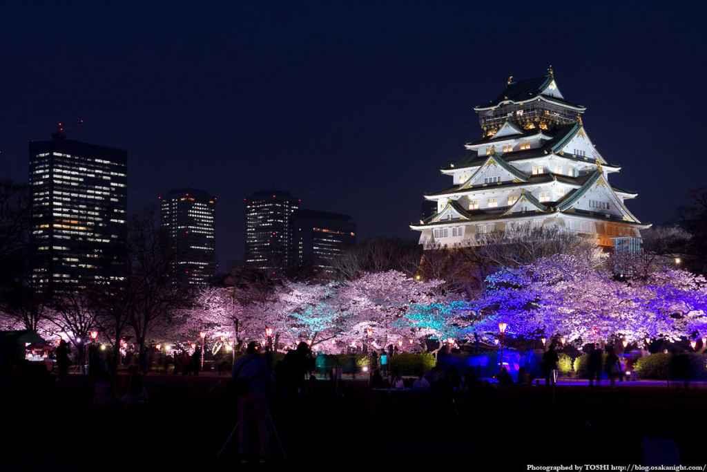 osaka_castle_sakura_night