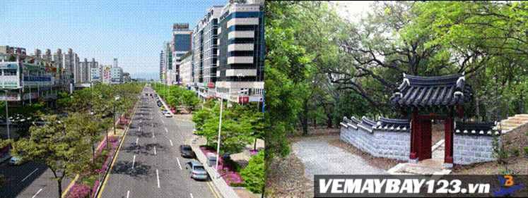 Vé Máy Bay Đi Gwangju Hàn Quốc Chỉ 236 USD